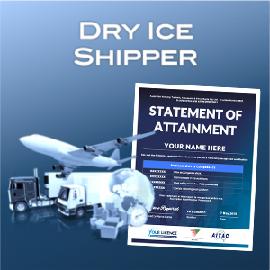 Dry ice shipper - SOA